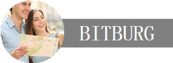 Deine Unternehmen, Dein Urlaub in Bitburg Logo